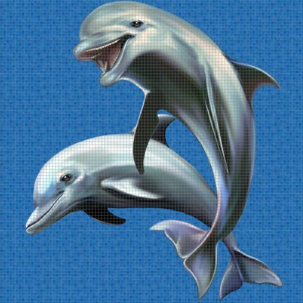 Панно Happy Dolphins