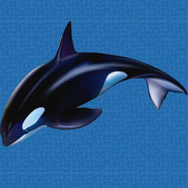 Панно Orca